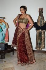 Diandra Soares at Shaina NC preview for Pidilite show in Mumbai on 26th Feb 2015 (16)_54f06a69d0061.JPG