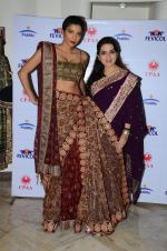 Diandra Soares at Shaina NC preview for Pidilite show in Mumbai on 26th Feb 2015 (37)_54f06a6ea563d.JPG