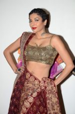 Diandra Soares at Shaina NC preview for Pidilite show in Mumbai on 26th Feb 2015 (9)_54f06ad755561.JPG