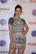 Manasvi Mamgai at Ciroc Filmfare Galmour and Style Awards in Mumbai on 26th Feb 2015 (103)_54f07843d0e4d.JPG