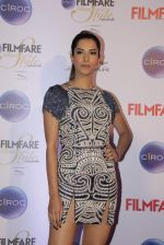Manasvi Mamgai at Ciroc Filmfare Galmour and Style Awards in Mumbai on 26th Feb 2015 (102)_54f07842392cf.JPG