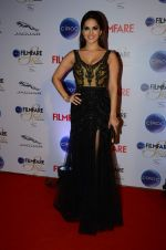 Sunny Leone at Ciroc Filmfare Galmour and Style Awards in Mumbai on 26th Feb 2015 (567)_54f079983563a.JPG