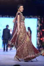 Diandra Soares at Shaina NC-Manish Malhotra Pidilite Show for CPAA on 1st March 2015 (154)_54f464cbae736.JPG