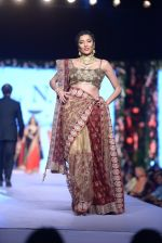 Diandra Soares at Shaina NC-Manish Malhotra Pidilite Show for CPAA on 1st March 2015 (156)_54f464ce8de5b.JPG