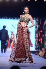 Diandra Soares at Shaina NC-Manish Malhotra Pidilite Show for CPAA on 1st March 2015 (157)_54f464cfeedec.JPG