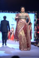 Diandra Soares at Shaina NC-Manish Malhotra Pidilite Show for CPAA on 1st March 2015 (155)_54f464cd28f86.JPG