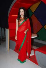 Rukhsar at Dream Girl on location in Filmcity, Mumbai on 2nd March 2015 (45)_54f575b857f9f.JPG