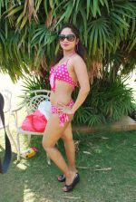 Marisa Verma bikini holi shoot on 5th March 2015 (39)_54f9787108021.JPG
