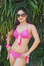 Marisa Verma bikini holi shoot on 5th March 2015 (43)_54f9787d7b660.JPG
