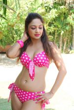 Marisa Verma bikini holi shoot on 5th March 2015 (46)_54f97887477d3.JPG