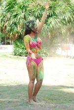 Marisa Verma bikini holi shoot on 5th March 2015 (52)_54f9789412e68.JPG
