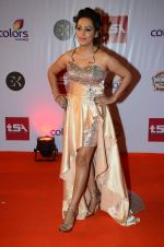 Ashita Dhawan at Television Style Awards in Filmcity on 13th March 2015 (59)_55042206c7068.JPG