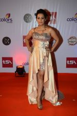 Ashita Dhawan at Television Style Awards in Filmcity on 13th March 2015 (63)_5504220e1e815.JPG