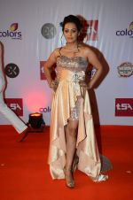 Ashita Dhawan at Television Style Awards in Filmcity on 13th March 2015 (62)_5504220a47d15.JPG