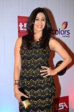 Kishwar Merchant at Television Style Awards in Filmcity on 13th March 2015 (90)_550422a9d806f.JPG