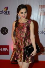 Sanjeeda Sheikh at Television Style Awards in Filmcity on 13th March 2015 (79)_550422e074c28.JPG