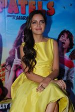 Shazahn Padamsee at Solid Patels trailer launch in Fun on 18th March 2015 (69)_550aabb4c4b27.JPG