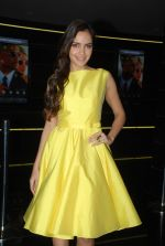 Shazahn Padamsee at Solid Patels trailer launch in Fun on 18th March 2015 (71)_550aabbaa6b32.JPG