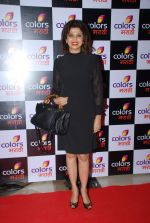 Varsha usgaonkar at Colors Marathi launch in J W Marriott, Mumbai on 20th March 2015 (112)_550d58e0d75cf.JPG