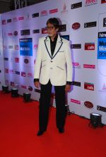 Amitabh Bachchan at HT Mumbai_s Most Stylish Awards 2015 in Mumbai on 26th March 2015 (422)_55154488dbc9d.JPG