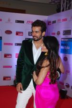 Jay Bhanushali, Mahi Vij at HT Mumbai_s Most Stylish Awards 2015 in Mumbai on 26th March 2015 (353)_55154a0d29af1.JPG