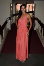 Nathalia Kaur at SPJ Sadhana School for a noble cause on 26th March 2015 (76)_55152cd55b91c.JPG
