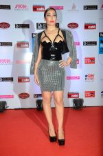 Sofia Hayat at HT Mumbai_s Most Stylish Awards 2015 in Mumbai on 26th March 2015 (726)_551547fe02773.JPG