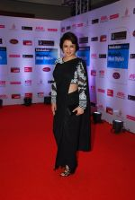 Tisca Chopra at HT Mumbai_s Most Stylish Awards 2015 in Mumbai on 26th March 2015 (345)_5515452e5c3ef.JPG