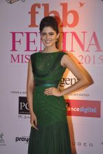 at Femina Miss India finals red carpet in Yashraj Studios on 28th March 2015 (214)_55180b8a2cb1b.JPG