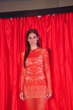 Bruna Abdullah at the launch of R-Vision_s movie Udanchhoo directed by Vipin Parashar in Mumbai on 31st March 2015 (48)_551b9763539b7.JPG