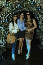 Kehkashan Patel at Maheka Mirpuri_s Summer Resort preview in Mumbai on 9th April 2015 (56)_5527a18de1407.JPG