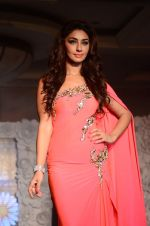 Mahek Chahal on ramp for Beti show in J W Marriott on 12th April 2015 (271)_552b94fba20d9.JPG