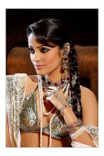 Megha Chatterjee Photo Shoot (13)_552b90a21a007.jpg