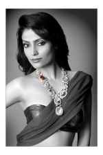 Megha Chatterjee Photo Shoot (7)_552b909bc98cc.jpg