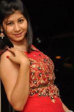 Janisa Patel (45)_552fdd491ea3f.jpg
