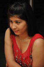 Janisa Patel (5)_552fdd525ec3e.jpg