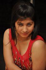 Janisa Patel (6)_552fdd533d329.jpg