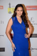 Waluscha De Sousa at Grazia young fashion awards red carpet in Leela Hotel on 15th April 2015 (1410)_5530a37198817.JPG