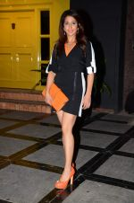 Krishika Lulla at Hi tea at Gauri Khan_s space for Maison & Objet in Khar, Mumbai on 29th April 2015 (14)_55421689df854.JPG
