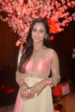 Krystal D Souza at Karan Patel and Ankita Engagement and Sangeet Celebration in Novotel Hotel, Juhu on 1st May 2015 (66)_5544c98546ade.JPG