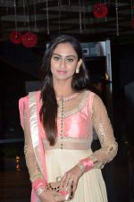 Krystral D Souza at Karan Patel and Ankita Engagement and Sangeet Celebration in Novotel Hotel, Juhu on 1st May 2015