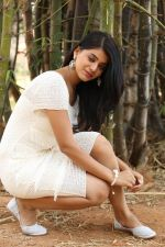 Yamini Bhaskar (48)_554afe791d195.jpg