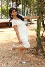 Yamini Bhaskar (54)_554afe7ed9892.jpg