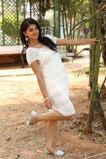 Yamini Bhaskar (55)_554afe7fb7f12.jpg