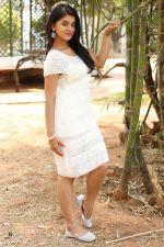 Yamini Bhaskar (58)_554afe827657c.jpg