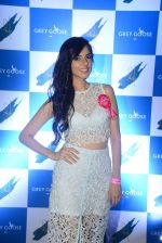 Nishka Lulla at Grey Goose Cabana Couture launch in Asilo on 8th May 2015