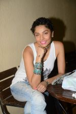 Diandra Soares at Narayani Shastri_s Rann film screening in Star House, Andheri on 10th May 2015 (12)_5550422f6ffec.JPG