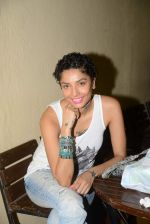 Diandra Soares at Narayani Shastri_s Rann film screening in Star House, Andheri on 10th May 2015 (13)_55504216d8d1e.JPG