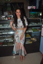 Lauren Gottlieb at Welcome to Karachi promotions in Karachi Sweets, Bandra on 15th May 2015