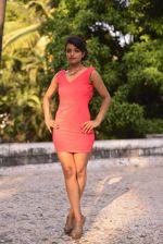 Ashna Zaveri (68)_555b0f6a02793.jpg